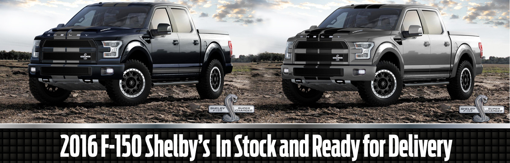 Shelby american is pleased to offer the next ford worthy of the shelby badge the shelby f 150